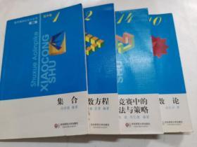 数学奥林匹克小丛书  高中卷(数论+集合+函数与函数方程+高中数学竞赛中的解题方法与策略)(第2版)