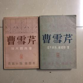 曹雪芹(上中卷大32开本)