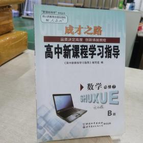 高中新教程学习指导 人教B版 必修 2 数学