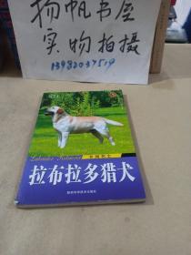 乡间名士:拉布拉多猎犬