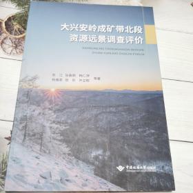 大兴安岭成矿带北段资源远景调查评价