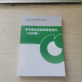 非车险业务核保政策指引(2020版)