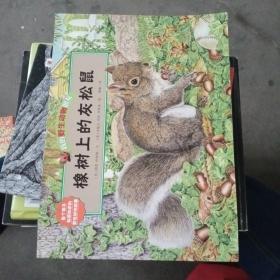 我的野生动物朋友  橡树上的灰松鼠  牧景塘的野鸭 子夜谷的鸣角鸮 白尾鹿的花丛大冒险  草地上的小黑蚁  棉尾兔的月下圆舞曲【6本合售如图,有印章】