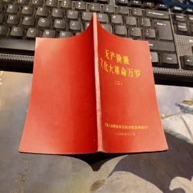 无产阶级文化大革命万岁 (二)