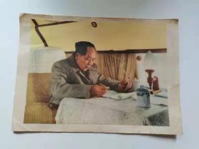 早期50年代。彩色毛主席画。18.5×26公分