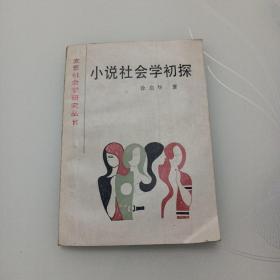 小说社会学初探