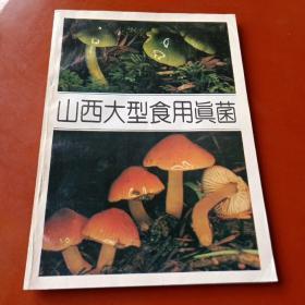 山西大型实用真菌(1850册)