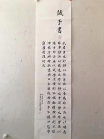 五台山释印玲法师  楷书 诸葛亮•诫子书  136*34cm