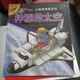 新概念儿童情景认知书·大眼界情景百科:神秘的太空