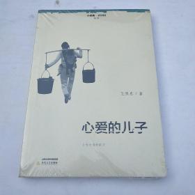 心爱的儿子/小说眼看中国丛书