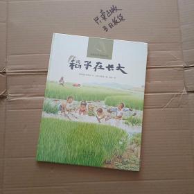 稻子在长大(9787535060327)