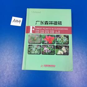 广东森林植物