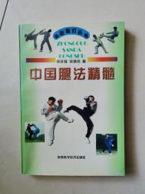 中国腿法精髓