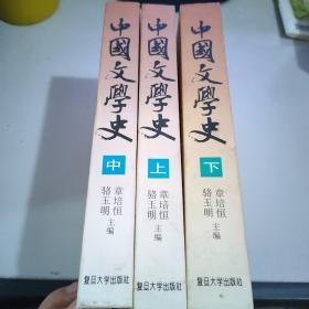 中国文学史(上中下)一版一印 精装