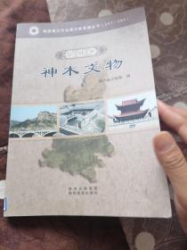 陕西第三次全国文物普查丛书:榆林卷.神木文物