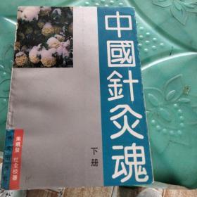 中国针灸魂下册