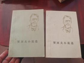 契诃夫小说选2册全