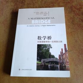 数学桥:对高等数学的一次观赏之旅(样书)