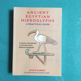 Ancient Egyptian Hieroglyphs A Practical Guide