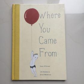 英文原版  Where You Came from  儿童读物