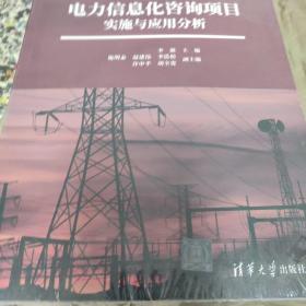 电力信息化咨询项目实施与应用分析.
