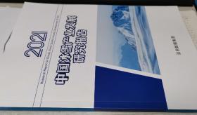 中国冰雪产业发展研究报告2021