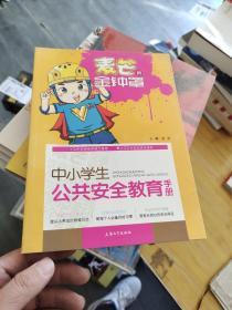 麦芒的金钟罩:中小学生公共安全教育手册