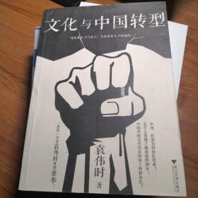 文化与中国转型