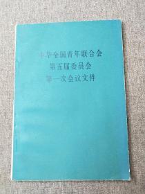 中华全国青年联合会第五届委员会第一次会议文件
