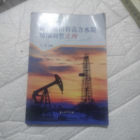 砂岩油田特高含水期精细调整实例