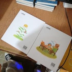 莎娜和森林帽子店 莎娜的梦幻花园