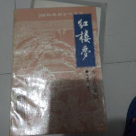 红楼梦/中国古典文学名著少年版(郑渊洁改写孟庆江绘制插图)