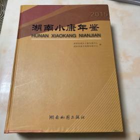 湖南小康年鉴 2015