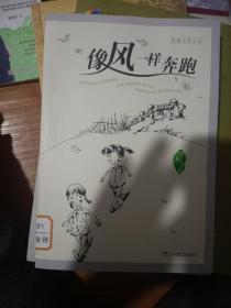 中国儿童文学影响力丛书·像风一样奔跑