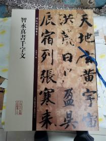 碑帖珍品临摹本:智永真书千字文