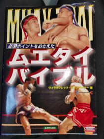 原版 最强战立技  日文版  泰拳 终合格斗 地面技 拳击格斗