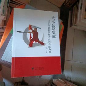 武术套路集成——以义乌民间及作者自创套路为例 有光盘。看图