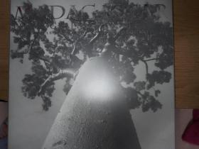 马达加斯加影像日记