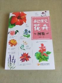 身边常见花卉图鉴