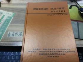邯郸市串城街【文化一条街】改造发展报告