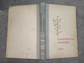 COMPARATIVE ANATOMY 比较解剖学【品较好,包邮】(布脊精装)1955年版