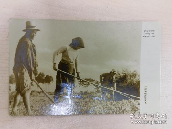 民国海南沿线农耕风景照片版老明信片