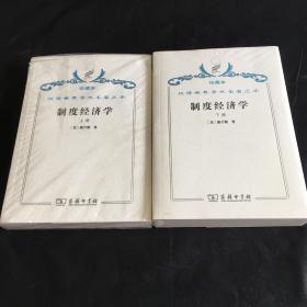 制度经济学 . 上下册  汉译世界学术名著丛书 珍藏本