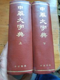 中华大字典(上下册)