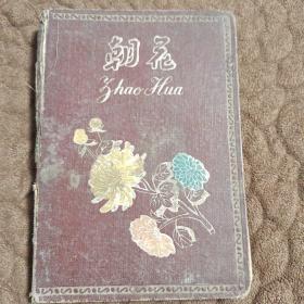 老笔记本:朝花