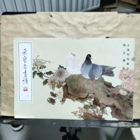 荣宝斋画谱(四十五)工笔花鸟部分  陈之佛 绘