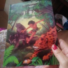 国际大奖儿童小说--森林王子