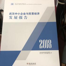 武汉中小企业民营经济发展报告2018