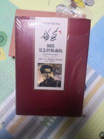中国翻译家译丛 梅益译钢铁是怎样炼成的