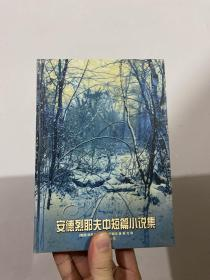 安德烈耶夫中短篇小说集